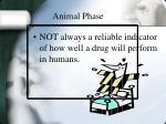 animal phase15