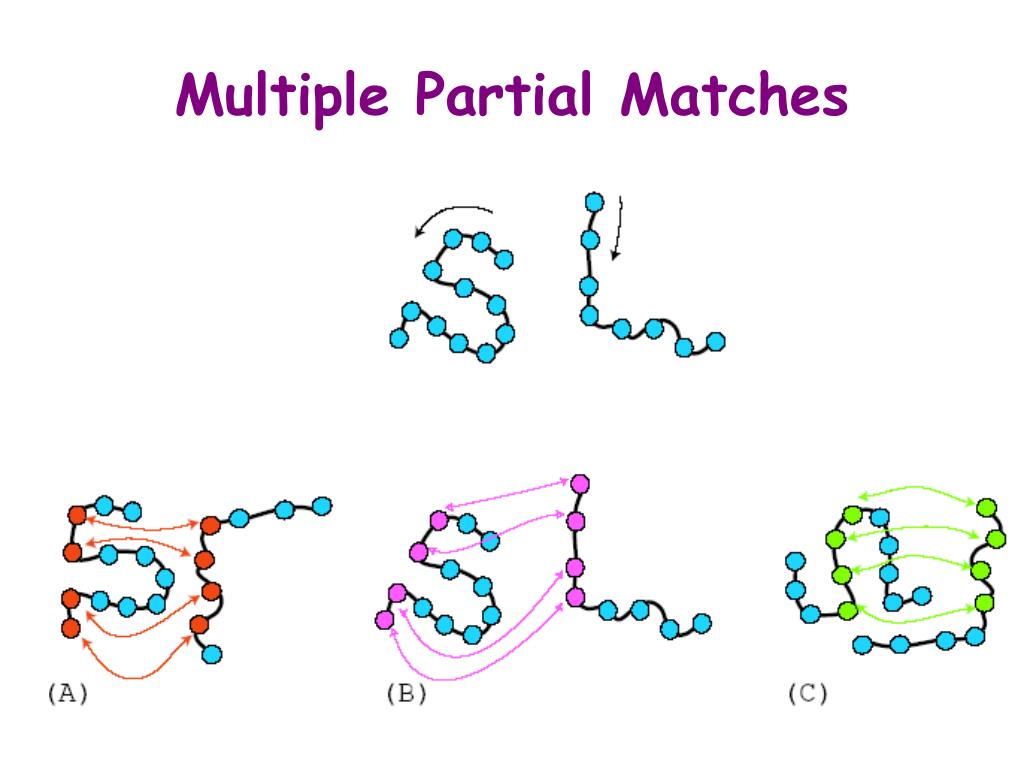 Multiple Partial Matches