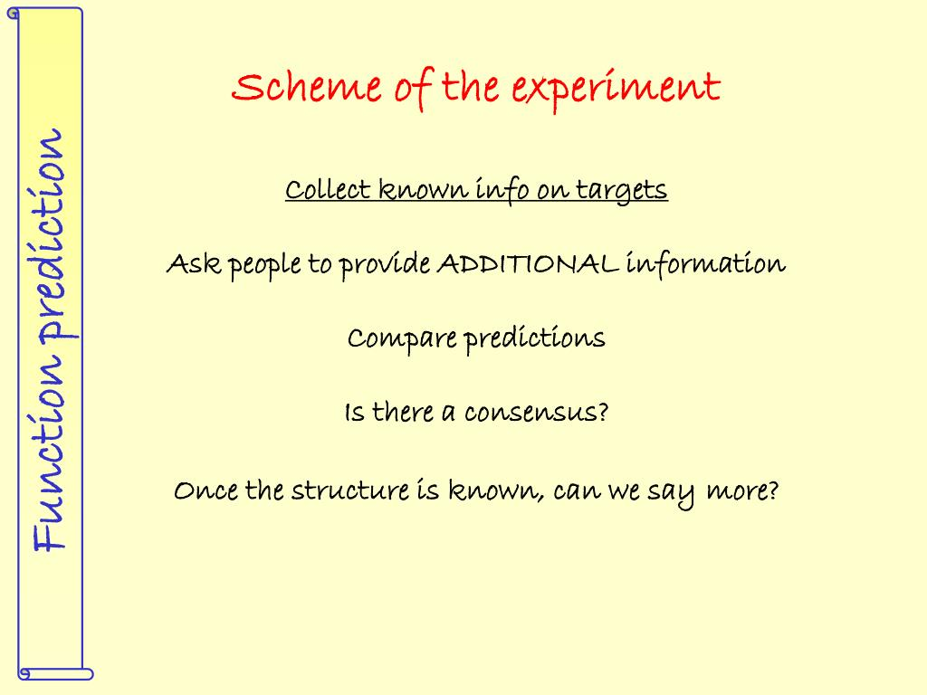 Scheme of the experiment