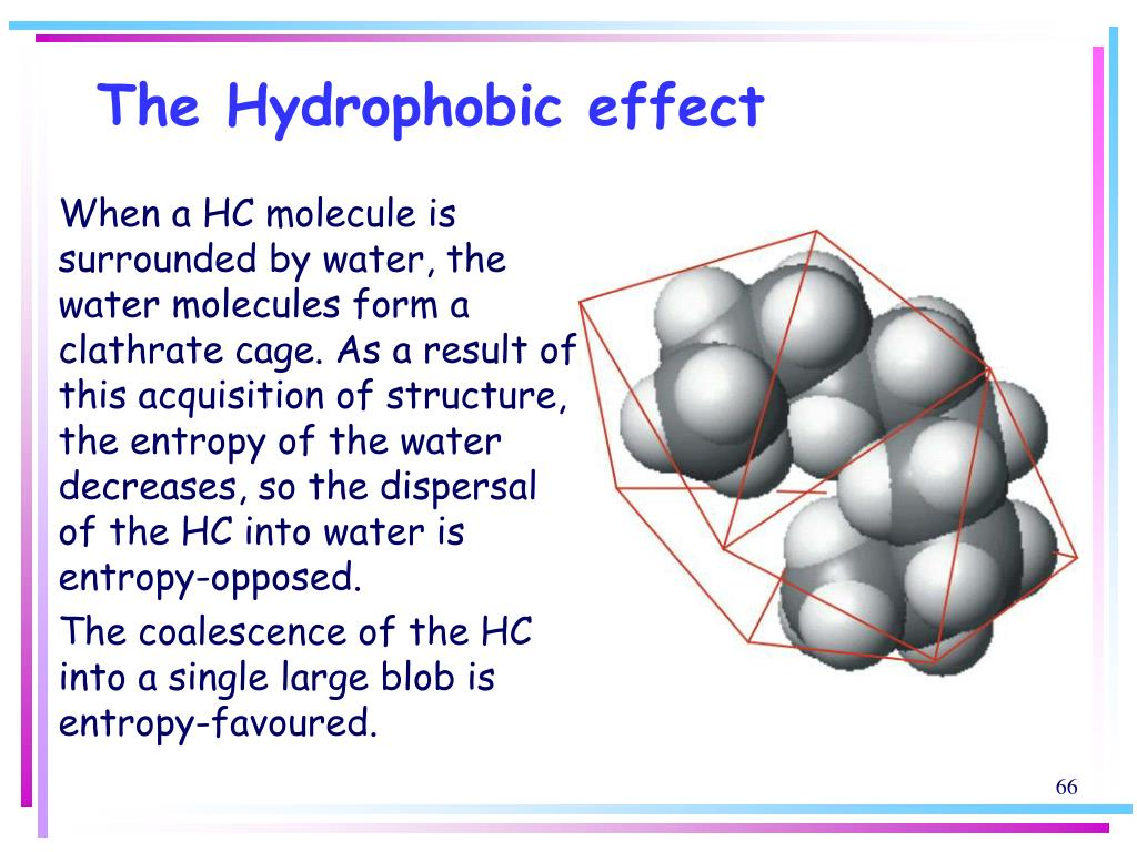 The Hydrophobic effect