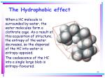 the hydrophobic effect66