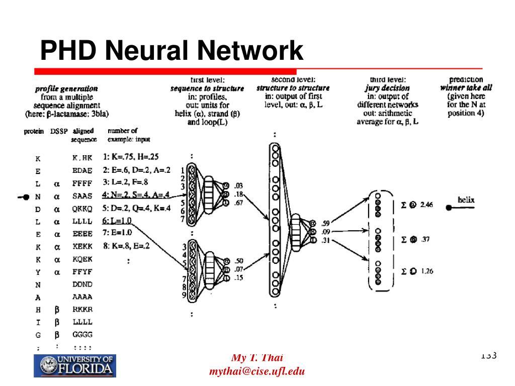 PHD Neural Network