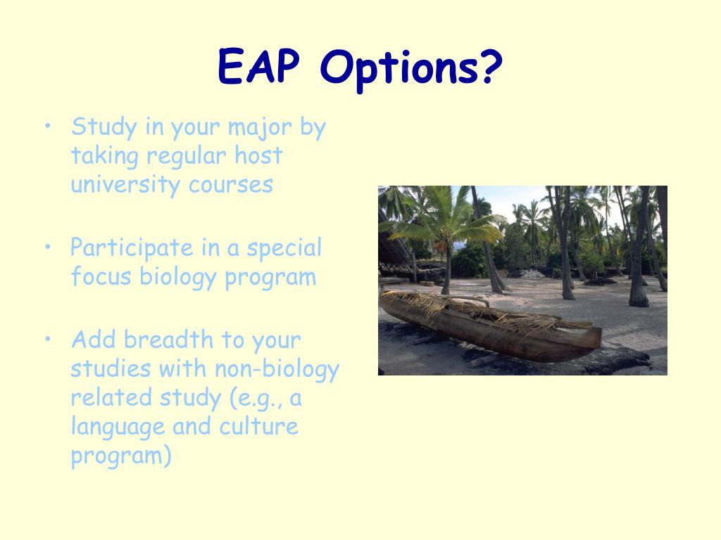 EAP Options?