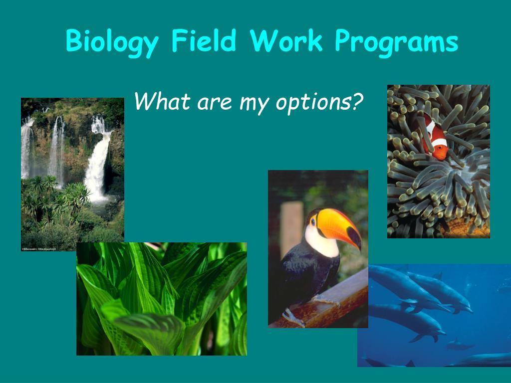 Biology Field Work Programs