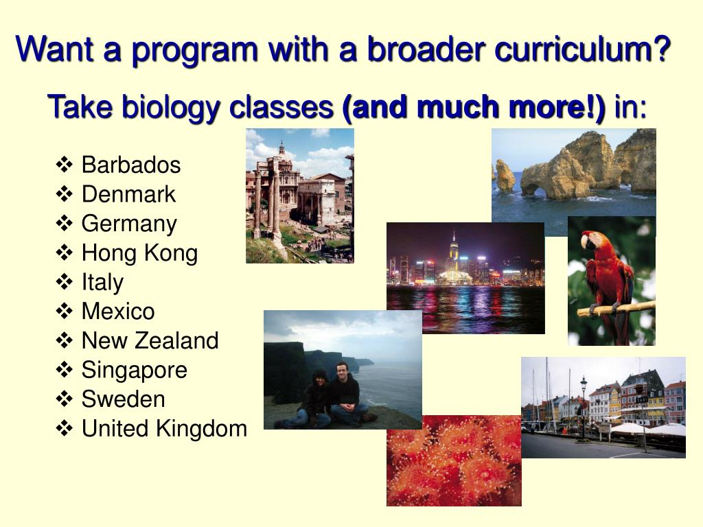 Want a program with a broader curriculum?