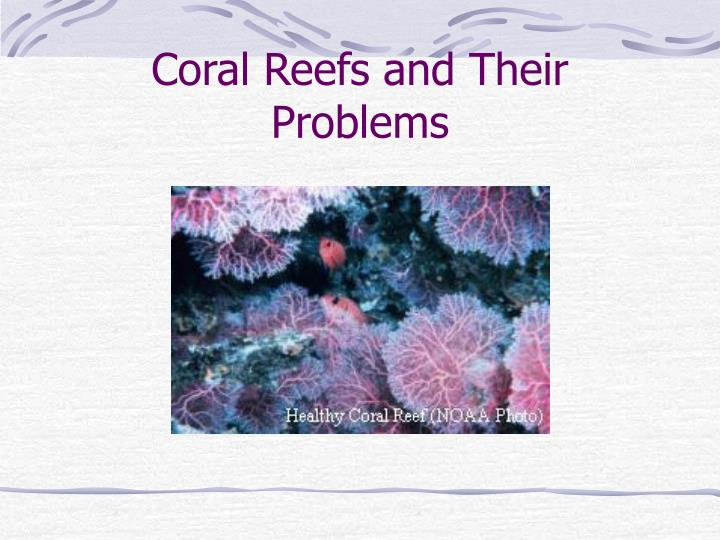 Coral reefs and their problems