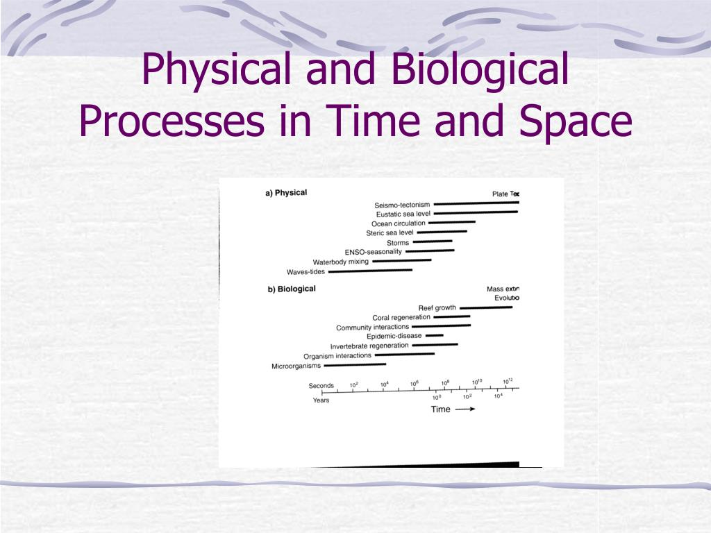 Physical and Biological Processes in Time and Space