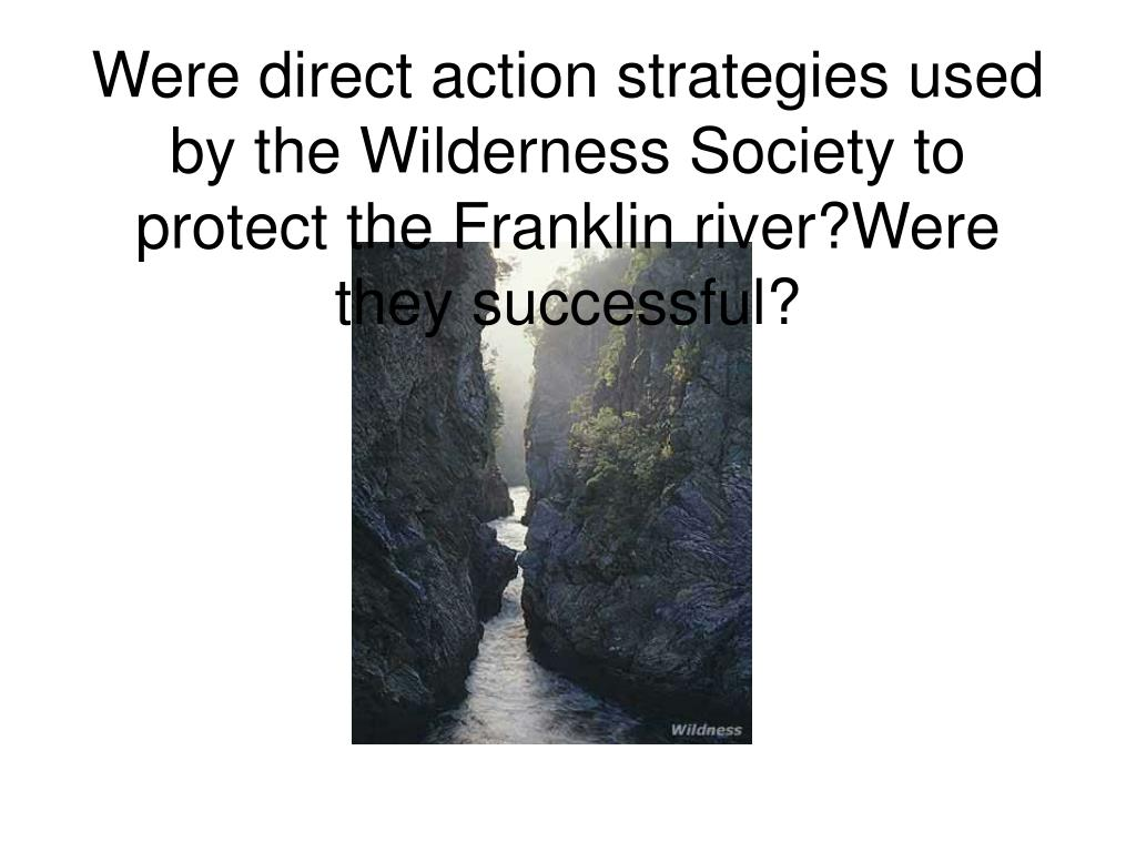 Were direct action strategies used by the Wilderness Society to protect the Franklin river?Were they successful?