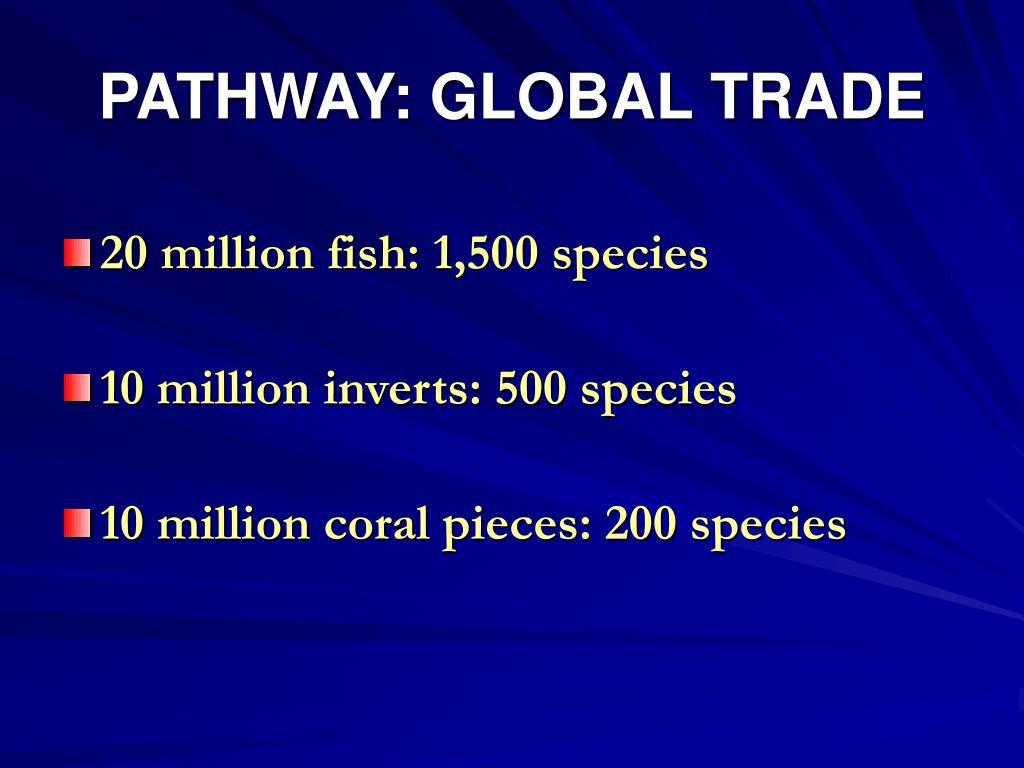 PATHWAY: GLOBAL TRADE