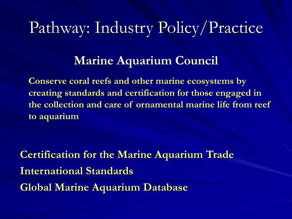 Pathway: Industry Policy/Practice