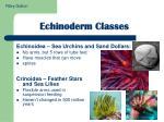 echinoderm classes1