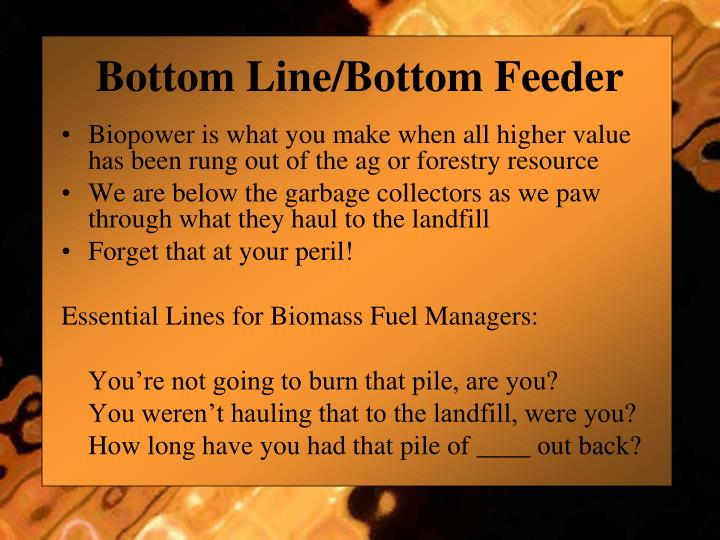 Bottom Line/Bottom Feeder