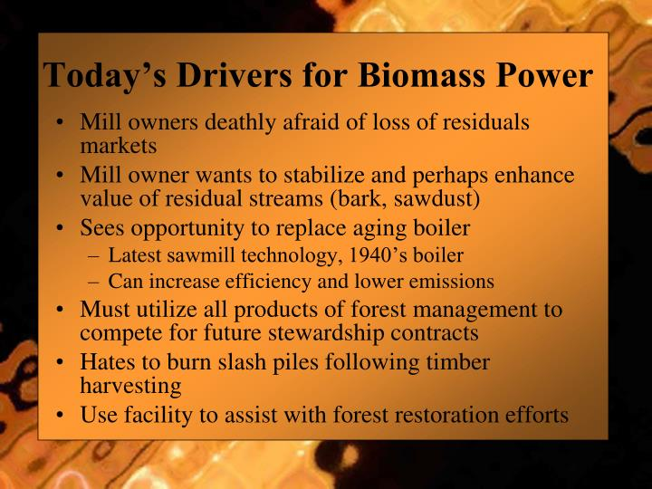 Today's Drivers for Biomass Power