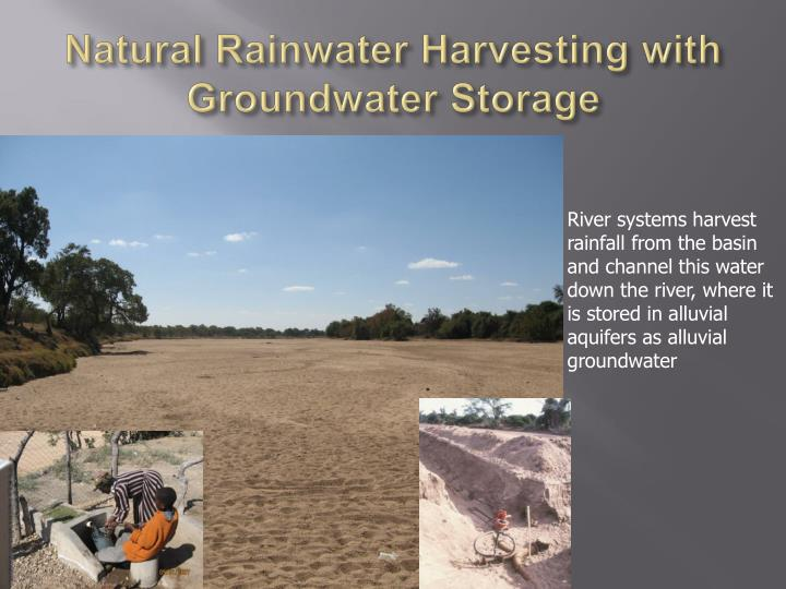 Natural Rainwater Harvesting with Groundwater Storage