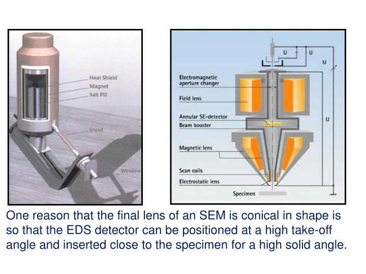 One reason that the final lens of an SEM is conical in shape is so that the EDS detector can be positioned at a high take-off angle and inserted close to the specimen for a high solid angle.