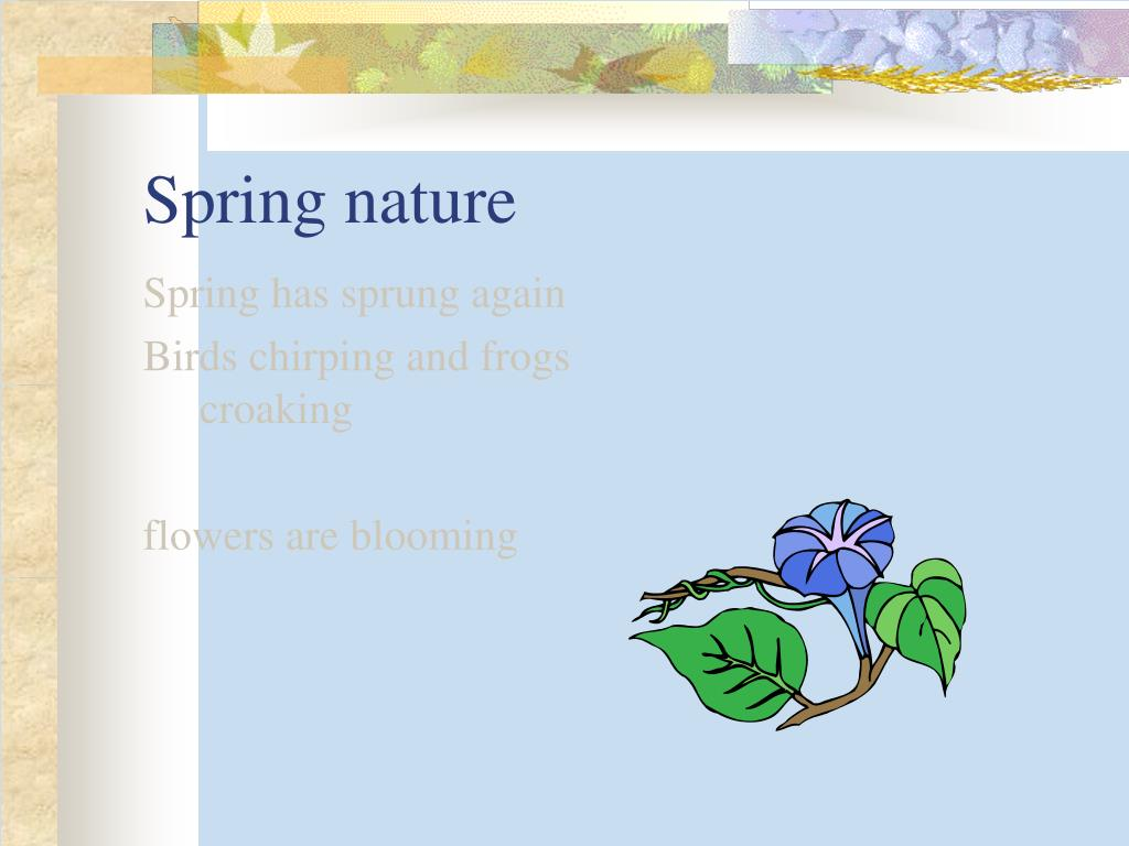 Spring nature