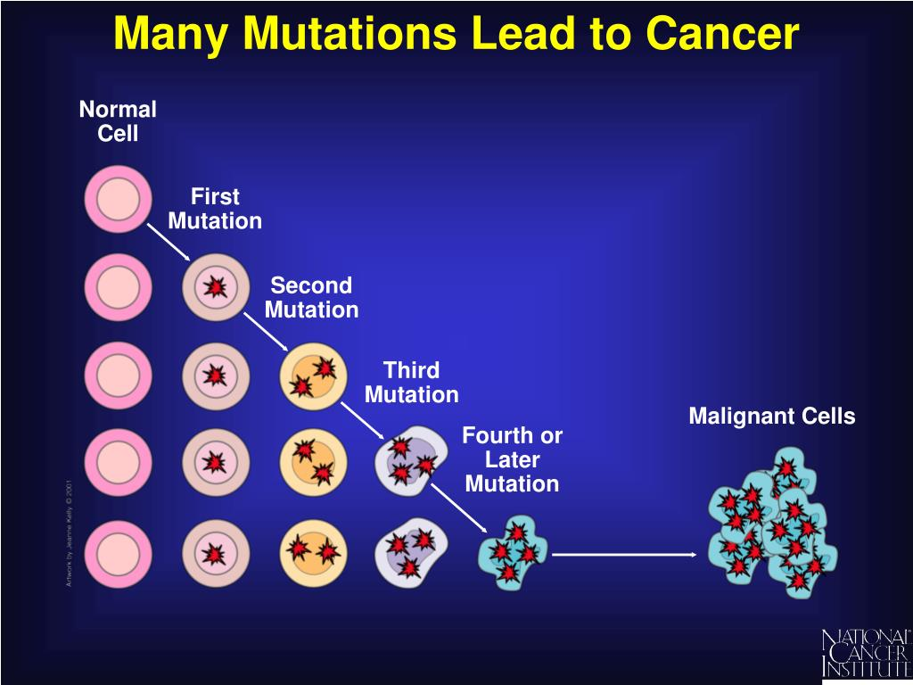 Many Mutations Lead to Cancer
