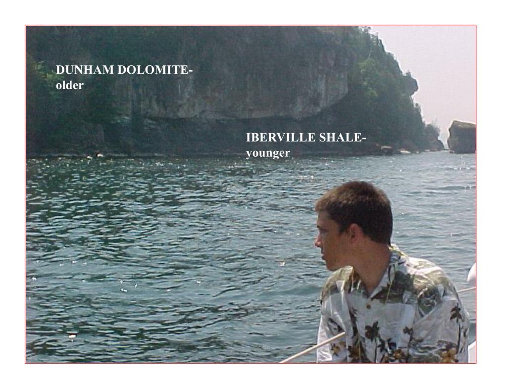 DUNHAM DOLOMITE- older