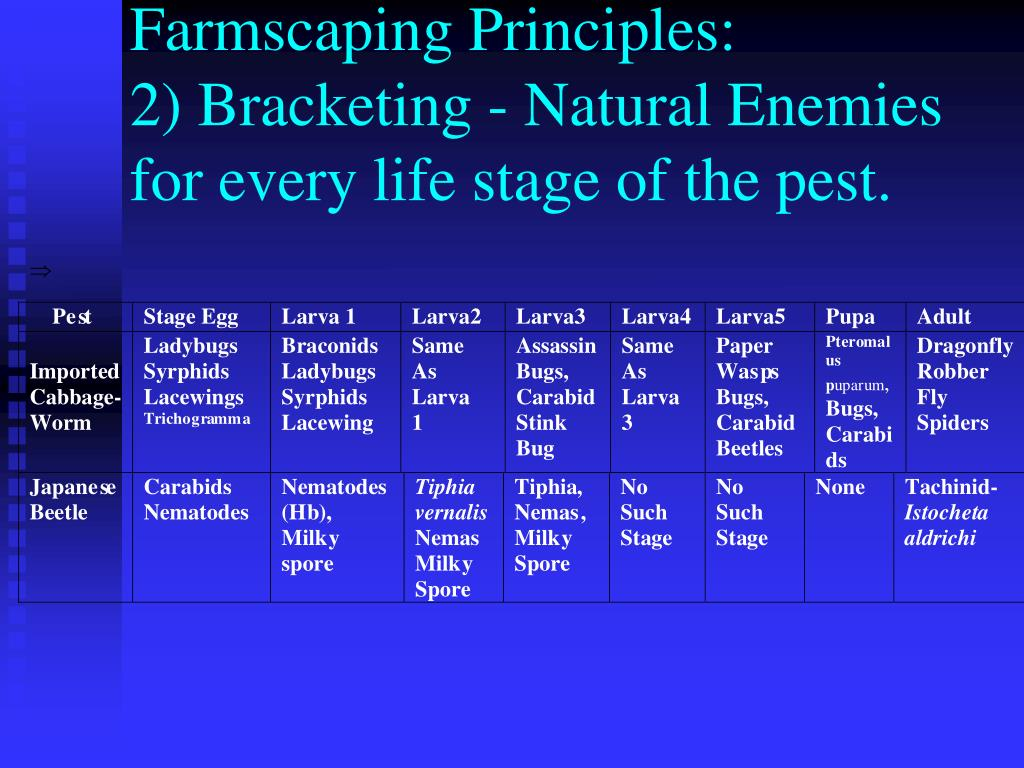 Farmscaping Principles: