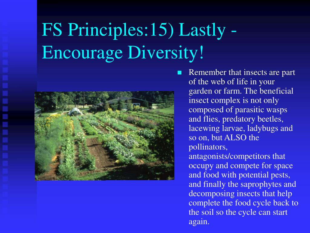 FS Principles:15) Lastly -Encourage Diversity!