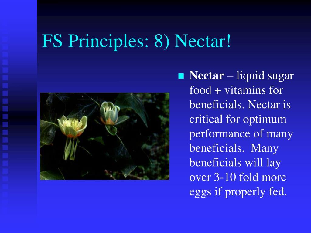 FS Principles: 8) Nectar!