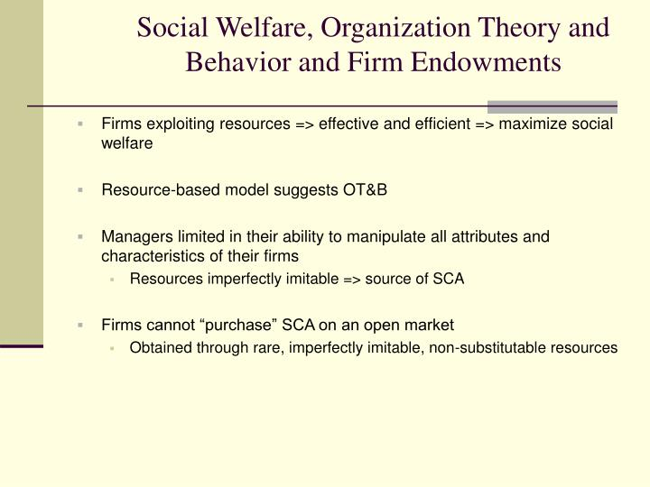 Social Welfare, Organization Theory and Behavior and Firm Endowments