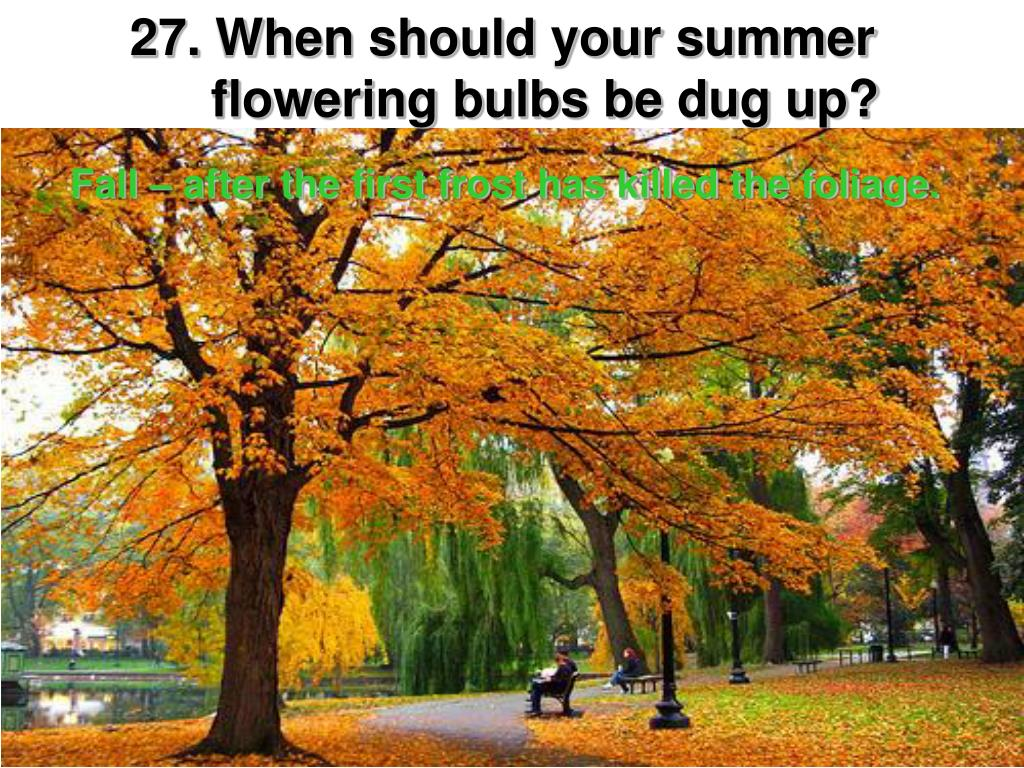 When should your summer