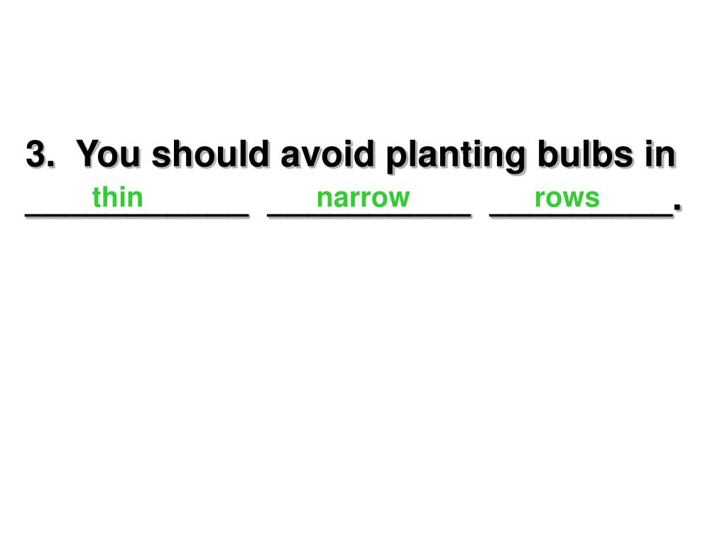 3.  You should avoid planting bulbs in ___________  __________  _________.