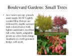 boulevard gardens small trees16