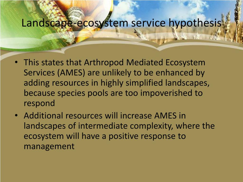 Landscape-ecosystem service hypothesis