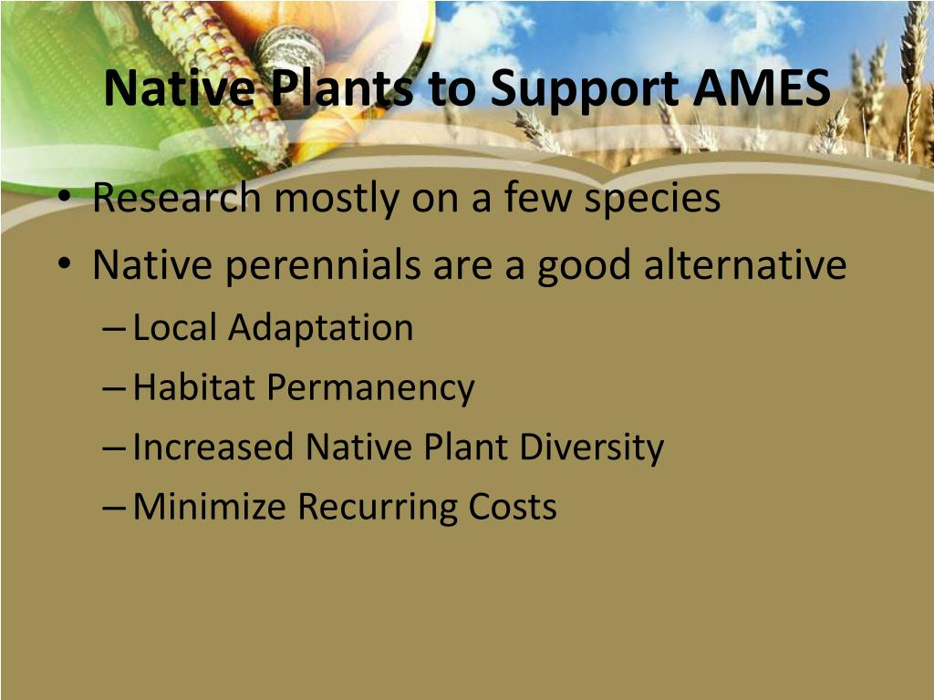 Native Plants to Support AMES