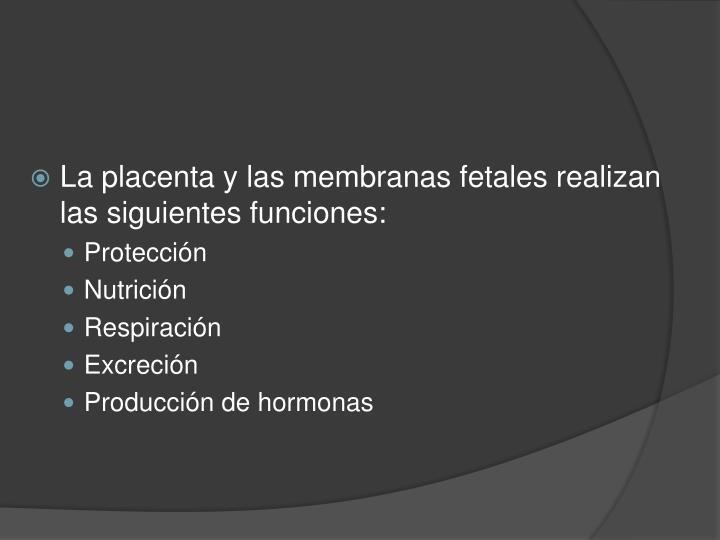 La placenta y las membranas fetales realizan las siguientes funciones: