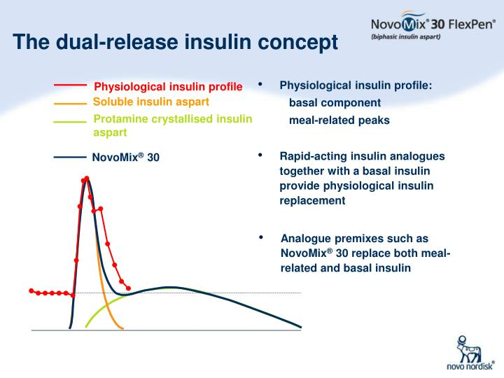 Physiological insulin profile: