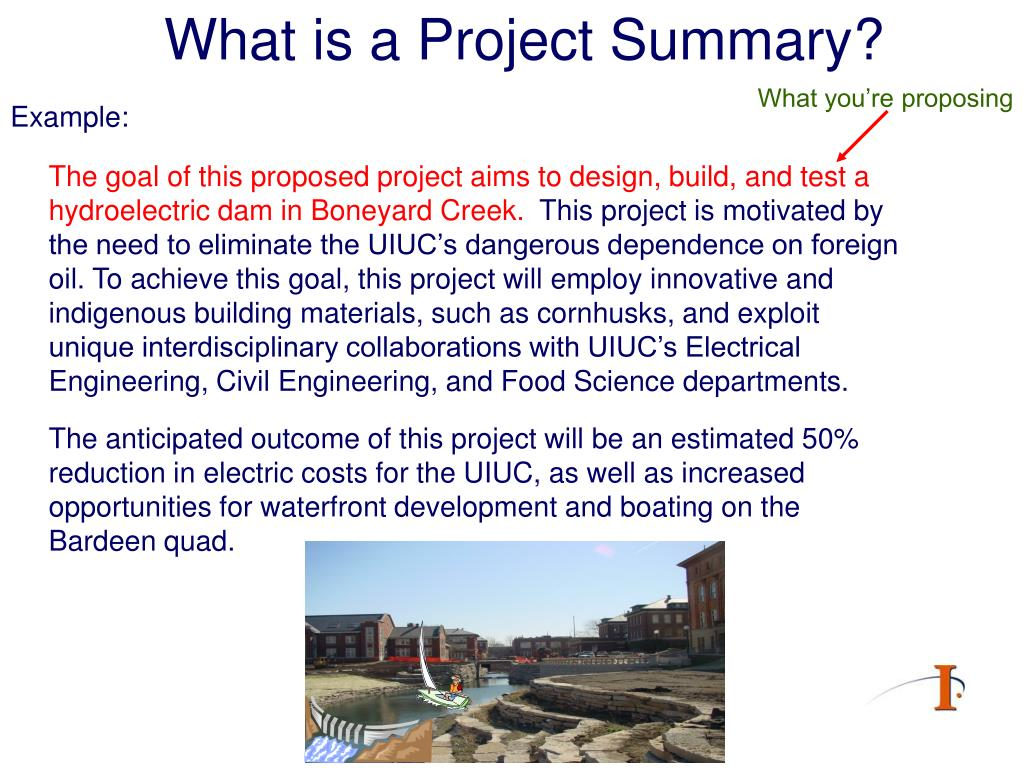 What is a Project Summary?