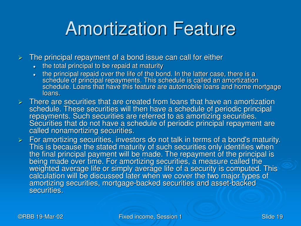 Amortization Feature