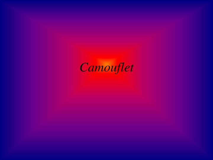 Camouflet