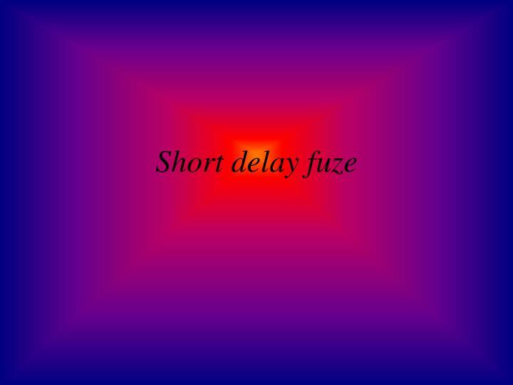 Short delay fuze