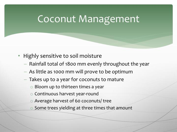 Coconut Management