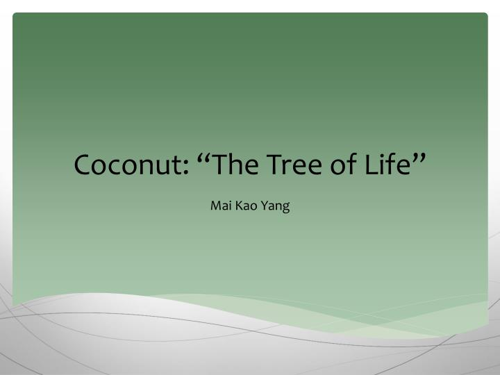 Coconut the tree of life