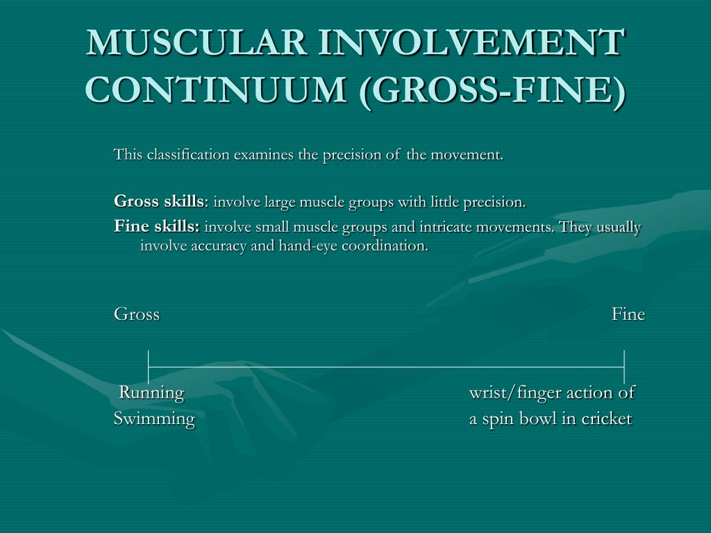 MUSCULAR INVOLVEMENT CONTINUUM (GROSS-FINE)