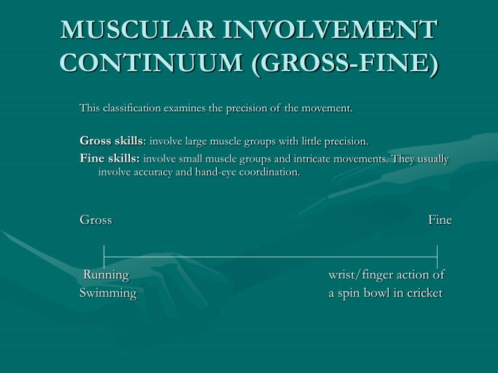 Muscular involvement continuum gross fine