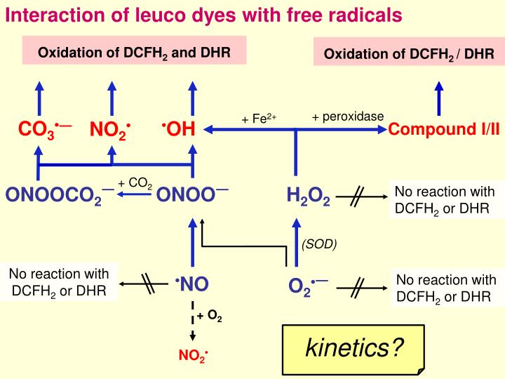 Interaction of leuco dyes with free radicals