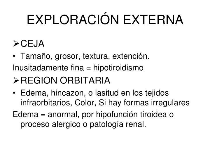 EXPLORACIÓN EXTERNA