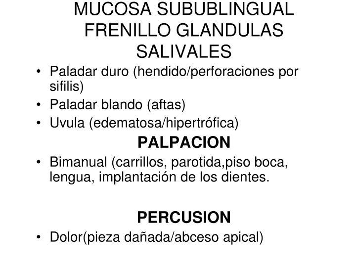 MUCOSA SUBUBLINGUAL FRENILLO GLANDULAS SALIVALES