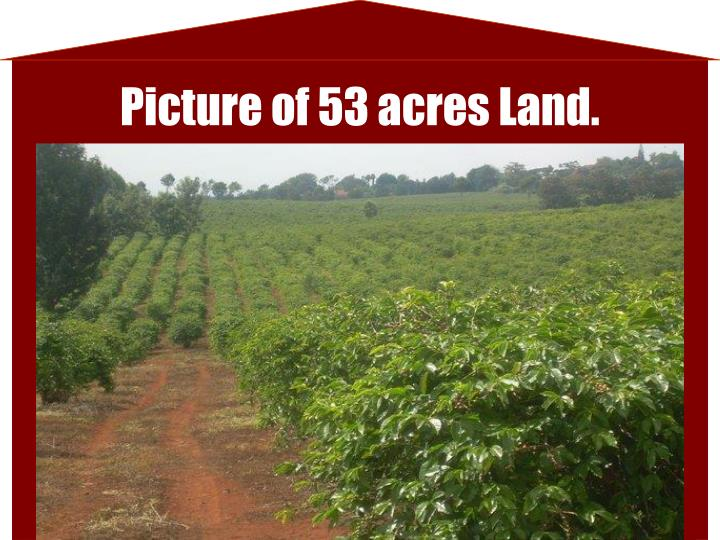 Picture of 53 acres Land.