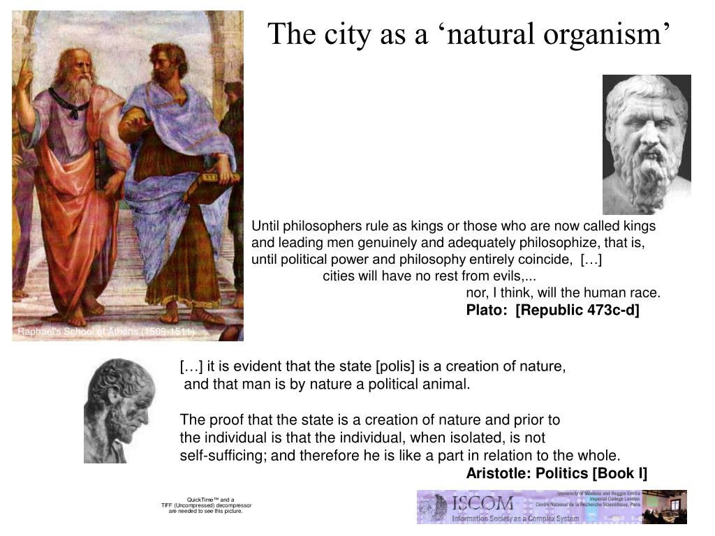 The city as a 'natural organism'