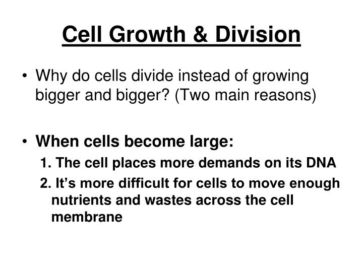 Cell growth division