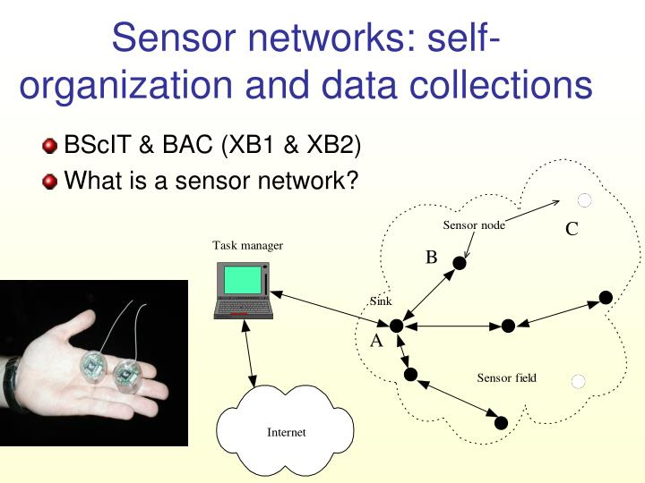 Sensor networks self organization and data collections