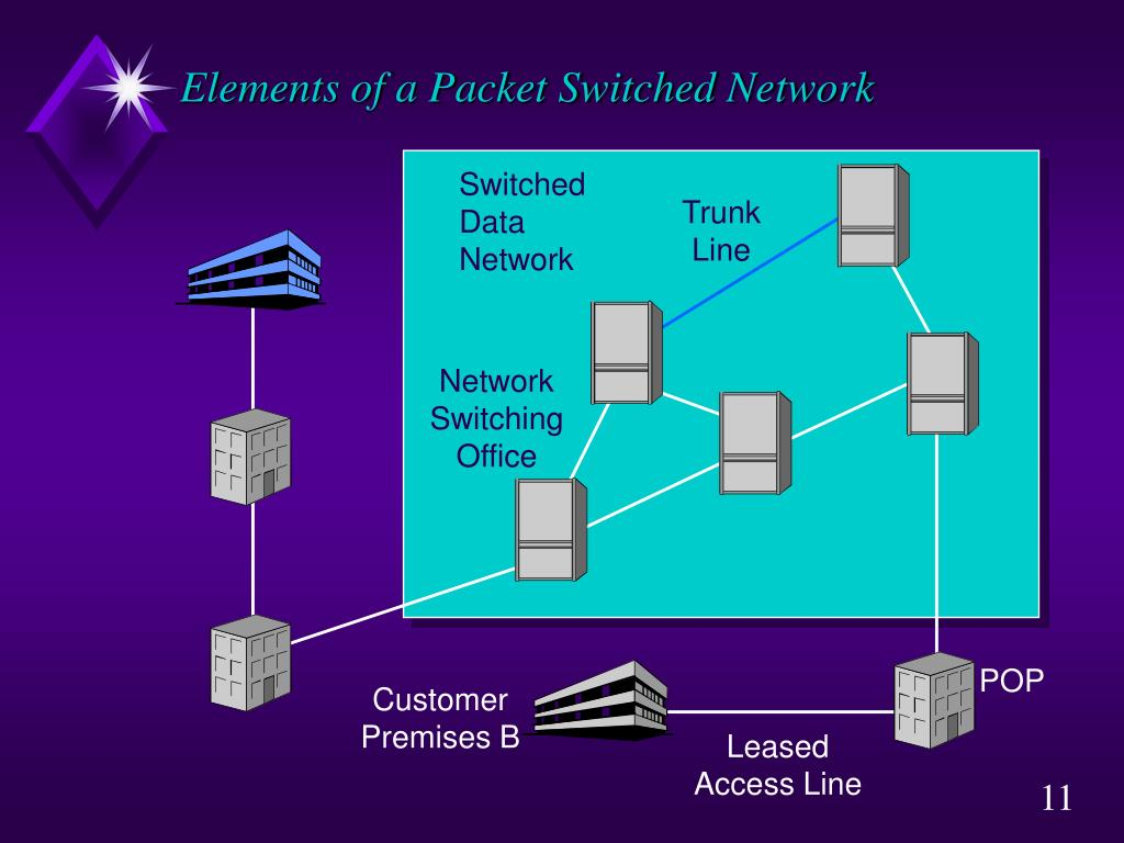 Elements of a Packet Switched Network