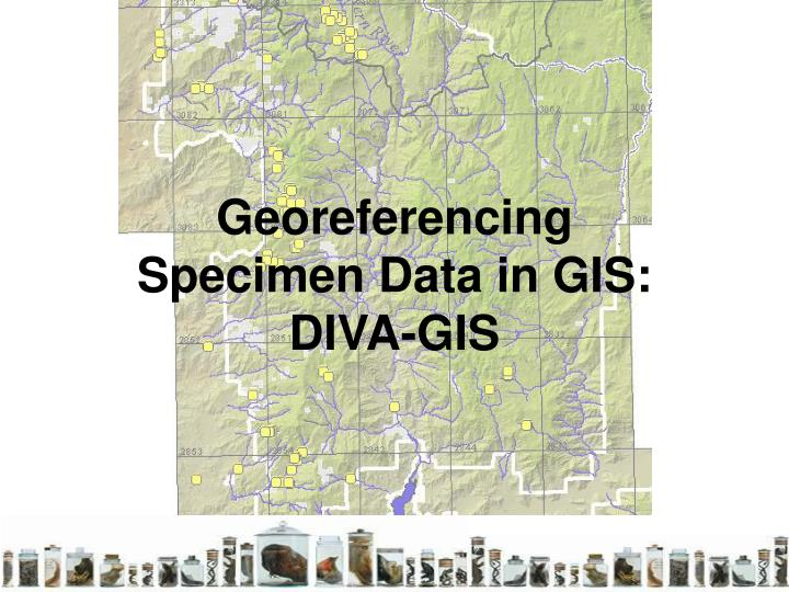Georeferencing specimen data in gis diva gis